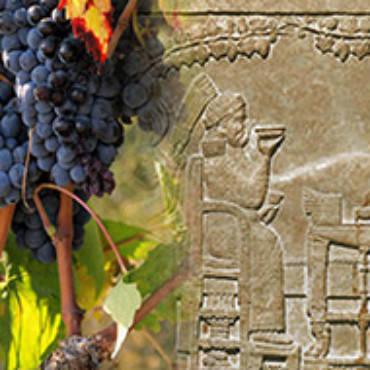 Il vino, gli Etruschi, l'oriente…