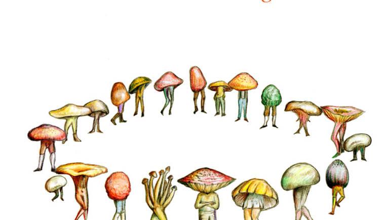 Il mondo magico dei funghi, il nuovo libro di Daniela Braccini